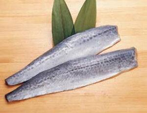 中国産)サゴシフィーレ 約200g×5枚(冷凍食品 焼物 フライ 業務用食材 魚 食材 魚介 シーフード)