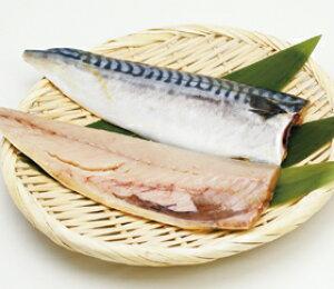 塩サバフィーレ3枚 (真空) 約150g×3切入 5965(生食可 鯖 塩味控えめ 塩処理 自然素材 業務用切身 切身 切り身)