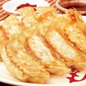 餃子計画)しそ餃子(しそ0.1%入) 1kg(約20g×50個)(ギョーザ ギョーザ ぎょーざ 餃子 ぎょうざ 中華 点心)