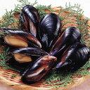 石光商事)殻付きボイルムール貝 500g(冷凍食品 焼物 蒸し焼き パエリア むーるがい カイ)