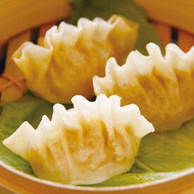フカヒレ風 餃子 600g (30個入) 13923(一品 飲茶 点心 ギョーザ 中華 ふかひれ 新商品)
