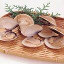 天然はまぐり(殻付) 500g(約20〜25個入)(冷凍食品 椀種 鍋物 酒蒸し 業務用食材 貝 はまぐり 殻付)
