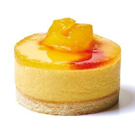 セルクルムース マンゴーパッション320g (10個入) 20399(カフェ デザート スイーツ おやつ ランチ フルーツ 南国 果物 ひとくち デザート)