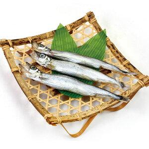 子持ちししゃも (干物)500g(40-46尾) 23052(柳葉魚 冷凍魚 ひもの 魚(原材料) 業務用姿)