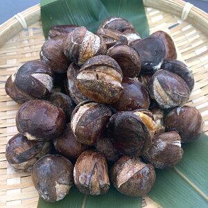焼き栗 1kg(約90〜100粒入) 22293 販売期間 9月-11月(惣菜 焼栗 やきぐり くり 自然解凍 甘味)