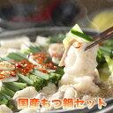 もつ鍋 セット 送料無料 国産牛 2~3人前(野菜付き)