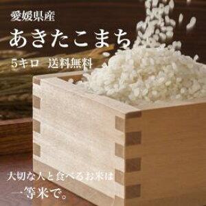 【送料無料】愛媛県産♪完全一等米!検査済み「あきたこまち5kg」美味しいお米 安全米