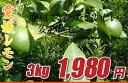 【送料無料】愛媛県産「レモン」 約3キロ※沖縄・北海道・離島の方は別途500円が必要です