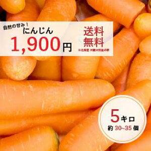 人参(国産) 5キロ