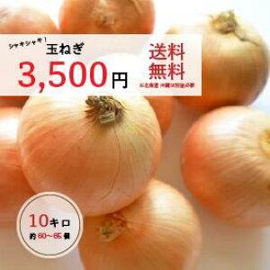 玉ねぎ(国産) 10キロ