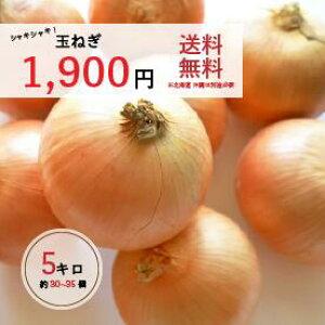 玉ねぎ(国産) 5キロ