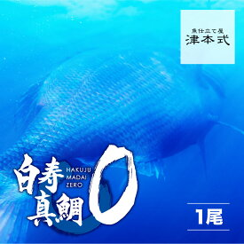 津本式 仕立て師:赤坂竜太郎 白寿真鯛ZERO重量1.8kg前後 養殖 送料無料 愛媛県から発送津本式 血抜き 雑誌 鮮魚
