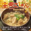 生姜ごはんの素 2合用(1袋)