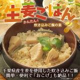 「生姜ごはんの素」エコパック