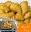【食用】中国産 黄金生姜 1kg(近江生姜 黄色)