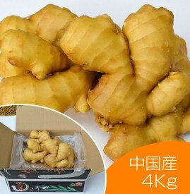 【食用】中国産 黄金生姜 4kg(近江生姜 黄色) 【富里出荷】