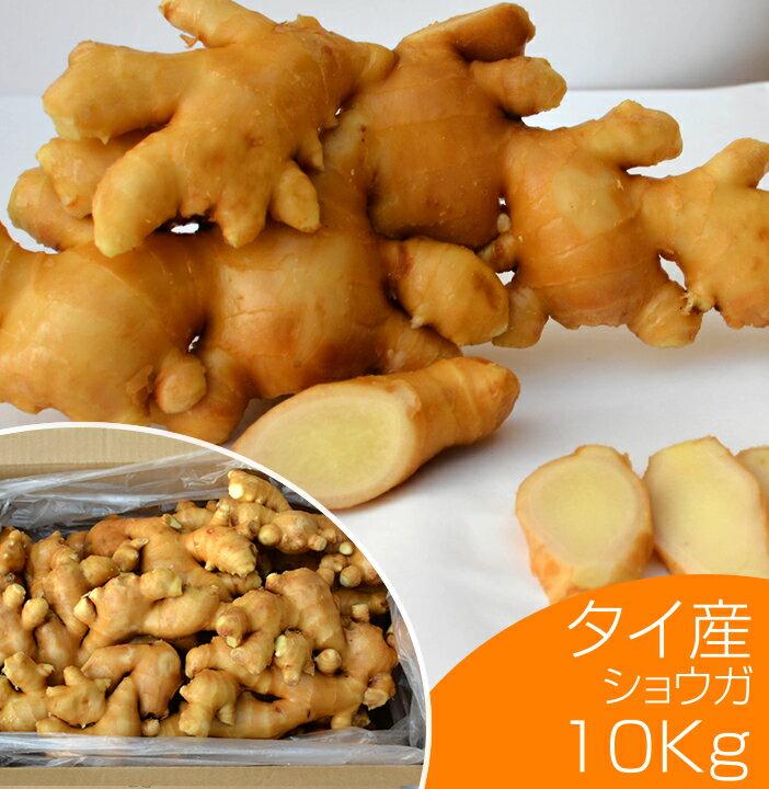 【食用】タイ産ほほえみショウガ 10kg(近江生姜 白)【生鮮青果/しょうが/効能/生姜茶/紅茶/根野菜/保存方法】