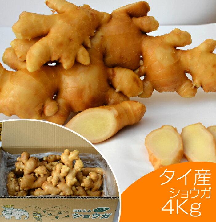 【食用】タイ産ほほえみショウガ 4kg(近江生姜 白)【生鮮青果/しょうが/効能/生姜茶/紅茶/根野菜/保存方法】