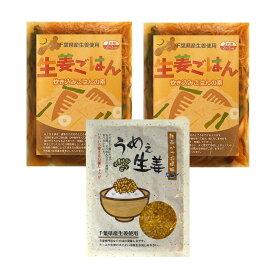 生姜ご飯の素(2袋)+うめぇ生姜かつおエコパック(1袋)クリックポスト送料無料[ご飯のお友 ご飯のお供]