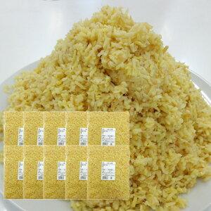 冷蔵 みじん切り生姜 10kg タイ産[みじんぎりしょうが] 一次加工品