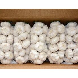 金郷種ホワイト にんにく種球 1kg×10ネット 中国産