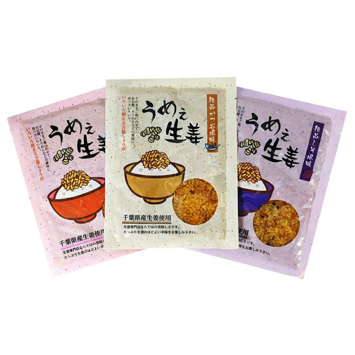 うめぇ生姜エコパック(鰹・しそ・梅) 135g 3種セット クリックポスト 送料無料