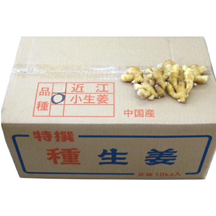 【種生姜】中国産 小生姜 10kg