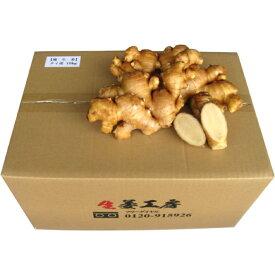 タイ産 近江生姜(白)10kg ※種生姜としてもご利用いただけます。[主治医が見つかる診療所 免疫力アップ食材 生姜 しょうが 生姜 しょうが ショウガ]