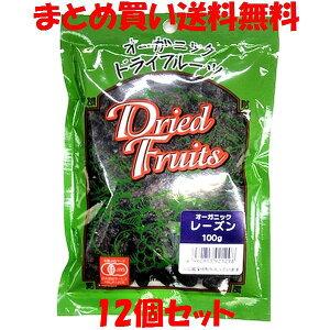 桜井 オーガニック レーズン 100g×12個セットまとめ買い送料無料