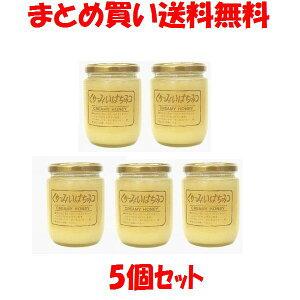 久保養蜂園 くりーみいはちみつ カナダ産 ビン入り 300g×5個セットまとめ買い送料無料