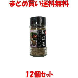 天塩 塩胡椒 天日塩 塩こしょう 塩コショウ 黒こしょう にんにく しょうが 小ビン入 65g×12個セットまとめ買い送料無料