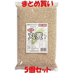 マルシマ 丸麦 1kg×5個セット まとめ買い