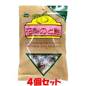 健康フーズ 花梨のど飴 100g(個装紙含む)×4個セットゆうパケット送料無料 ※代引・包装不可