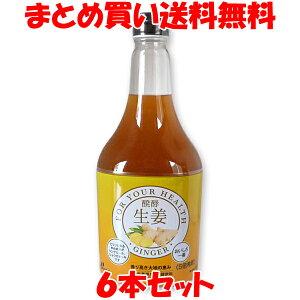 発酵飲料 醗酵生姜 ジャフマック 5倍希釈 565ml×6本セットまとめ買い送料無料