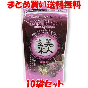 美人玄米 黒米入り玄米 無洗米 300g×10袋セットまとめ買い送料無料