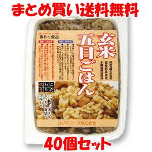 玄米五目ごはん レトルト コジマフーズ 160g×40個セットまとめ買い送料無料