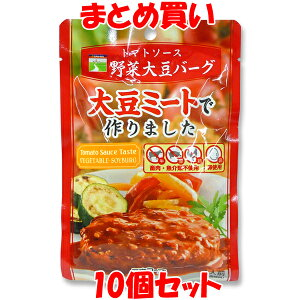 トマトソース 野菜大豆バーグ 三育フーズ ハンバーグ 温めるだけ レトルト 大豆ミート ベジタリアン ノンコレステロール 100g×10個セット まとめ買い