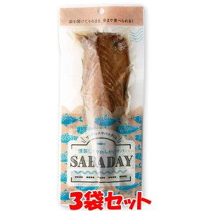 浜吉ヤ SABADAY 燻製サバ 1枚×3袋セット ゆうパケット送料無料(代引・包装不可)