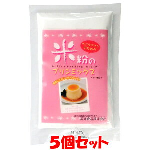 桜井 ベジタリアンのための米粉プリンミックス 80g×5個セットゆうパケット送料無料 ※代引・包装不可