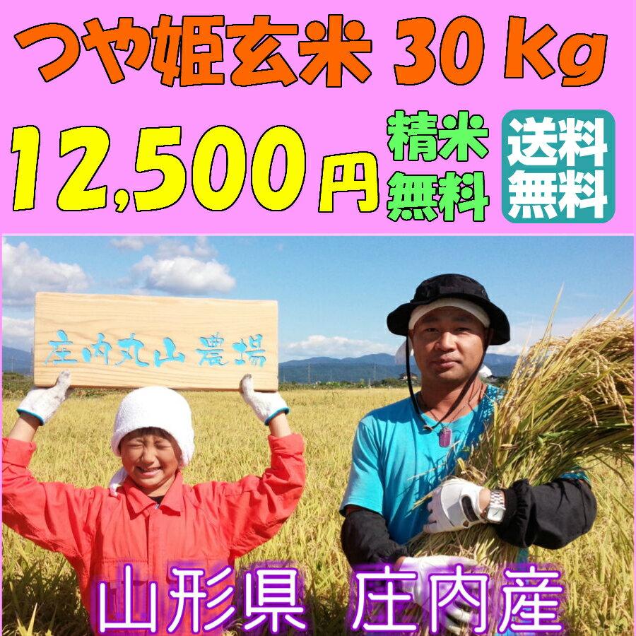 【送料無料】【29年度産】【30kg】山形つや姫  減農薬特別栽培米 1等米 白米(27kg) 玄米(30kg)選べます 【農家直送!! 送料無料(一部追加あり】
