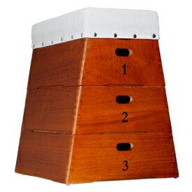 跳び箱収納 3段 (おもちゃ箱 子供用家具 収納ボックス) 【本州・四国 送料無料】