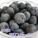 訳あり 長野県産 冷凍ブルーベリー 600g(100g×6p)