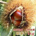 栗 信州産 小布施栗(銀寄)【低温熟成・無薫蒸】1kg(L〜3Lサイズ)