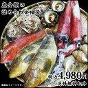 魚介類の詰め合わせ【4980円セット】福袋(魚介類3〜6品程度入) 【送料無料】