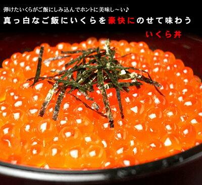 送料無料!北海道産いくら(醤油漬け)【冷凍】500gセット【注意!他商品と同梱はできません。】