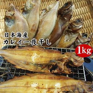 【日本海産カレイ一夜干し1kgセット】【冷凍】送料無料【1配送先で2セット以上お買い上げで1セット増量】*【RCP】