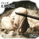 ジャンボ広島牡蠣(かき)[冷凍] 1kgパック【送料無料】【smtb-T】【YDKG-t】【RCP】