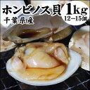 千葉県産【ホンビノス貝】(1kg(12-15個)入り)[冷凍]