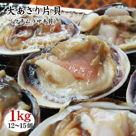 【大あさり片貝(ウチムラサキ貝)】(1kg(12-15個)入り)[冷凍]【バーベキューにおススメ】アサリ
