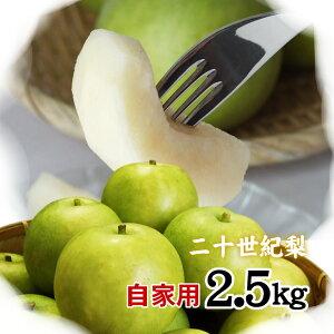二十世紀梨 【自家用】2.5kgセット(8-9玉入)【送料無料】【鳥取県産】(20世紀梨)[常温]梨 なし 和梨【9月上旬以降予約順出荷予定】